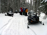 Rent Snowmobile